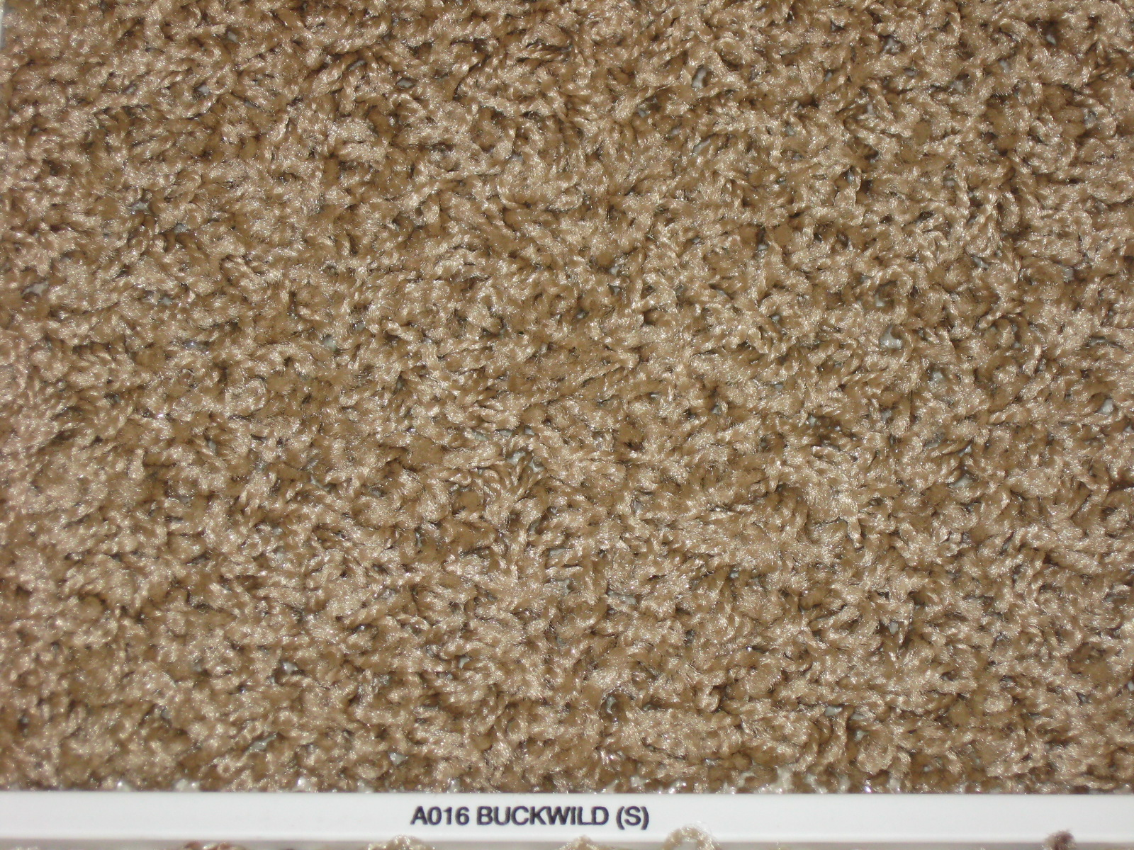 Berber Carpet Colors http://indianafloorsllc.com/rockwoodcpt.aspx